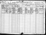 1920 Census, Minnesota, Roseau County, Clear River Township. Verdine and Rosetta are living with their son David.