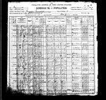 1900 Census, Minnesota, Wabasha County, Mazeppa Township. Sylvester Summers and his wife Almeda (Soules) were living in Mazeppa Township with three of their children.